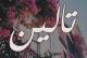 مسلسل تالين الحلقة 29و30و31 للكاتبة:سلمى الزهيري